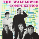 WALFLOWER COMPLEXTION, THE (LP) US