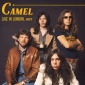 CAMEL ( LP) UK