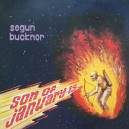 BUCKNOR, SEGUN & HIS REVOLUTION
