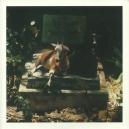 SPIRITS & WORM ( LP ) US